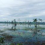 Photo de Angkor Archaeological Park