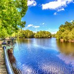 One of the many spots to take in the view along the Waccamaw River on the Riverwalk!