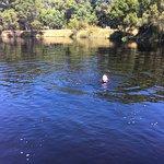 In the beautiful lake