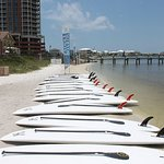 Rentals of surfboards and numerous other activities!