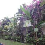 Photo of La Residence WatBo Hotel
