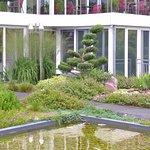 """""""Japanischer (Dach-)Garten""""  mit Blick aufs Haupthaus"""