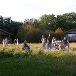 The Lodge Field at Wheatland Farm Eco Lodges