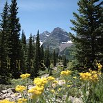 The Bells while hiking the West Maroon Creek trail up to West Maroon Pass.