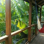 Casa Lobo Bungalows Foto