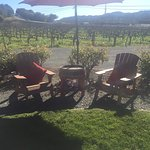 Foto de Healdsburg Wine Tours