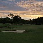 Copperhead Course - dawn