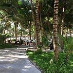 Sensimar Seaside Suites & Spa