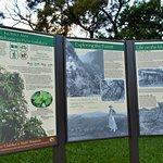 Tantalus Lookout Puu Ualakaa State Park Foto