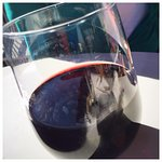 Red Wine with Spotty Glasses