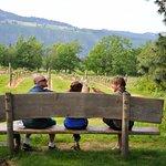 Willamette Valley Wine Tasting