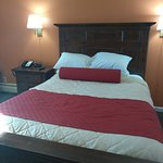 Days Inn Minot Queen Bed