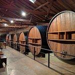 Huge oak barrels at Museo del vino