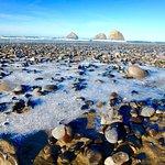 Oceanside Beach State Recreation Site