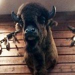 Rocking Horse Ranch Resort Foto