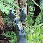 Auckland Domain Foto