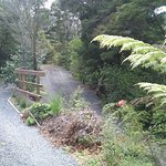 I can't believe people complain about this. Rustic accommodation in the NZ bush = gravel drivewa