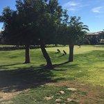 Foto de Boavista Golf Resort