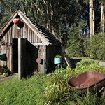 wooden shack by vegetable garden