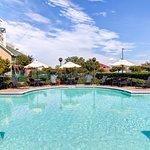 Photo of Homewood Suites Dallas/Addison
