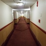 La Quinta Inn & Suites Stamford / New York City Foto