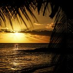 Turtle Beach by Elegant Hotels Foto