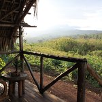 Photo of Crater Forest Tented Camp