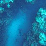 Big Blue Dahab Foto