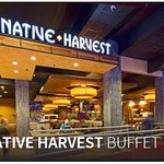 Native Harvest Buffet