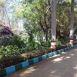Lake Entrance Garden