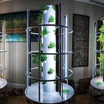 Can you say Aeroponic Towers. All fresh herbs, right beside you.