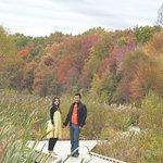 Huntley Meadows Park in Fall