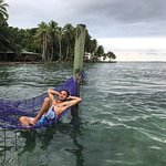 Ocean hammocks at the beach club