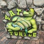 Photo de Fat Turtle