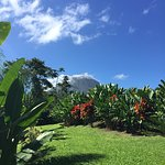 View of Arenal Volcano on the walk to lobby
