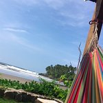 hammock by the beach