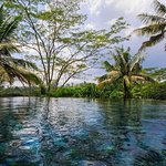 Luxury Hortel in Ubud