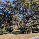 Photo du parc