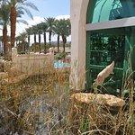 Herods Palace Hotel Eilat Foto