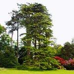 Photo of Jardin Public de Bayeux