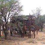Urikaruus Wilderness Camp照片
