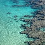 Crystal clear water with coral and lots of fish.