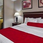 西方最佳奧本代爾套房飯店照片