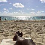 Grand Lucayan, Bahamas Foto