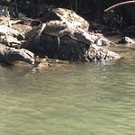 Cañón del Sumidero Foto