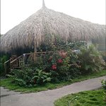 Photo of Mondi Lodge