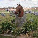 Gunnedah Jockey Club