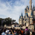 Foto di Magic Kingdom