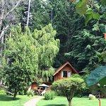 Foto di Cabanas Rincon del Lago
