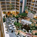 Sheraton Suites Cypress Creek Ft. Lauderdale